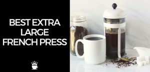 Best Extra Large French Press